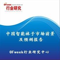 中国智能袜子市场前景及预测报告(2017版)